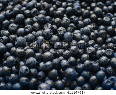 Bilberry in close-up, photo with selective focus - stock photo