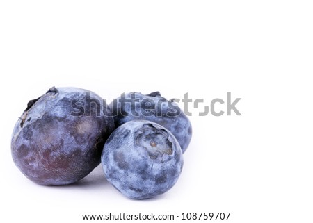 Bilberry isolated on white background - stock photo