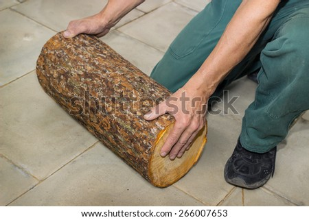 Billet of logs in the hands of a carpenter on floor - stock photo