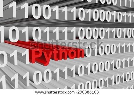 binary code is a high-level programming language Python - stock photo