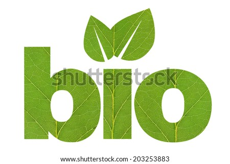 Bio shape made of green leaf texture isolated on white background - stock photo