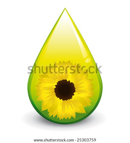Biodiesel sunflower oil droplet - stock photo