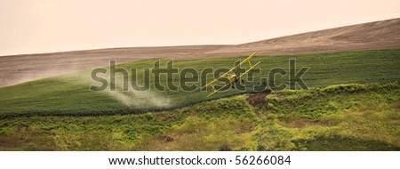 Biplane crop duster spraying wheat field at very low level - stock photo