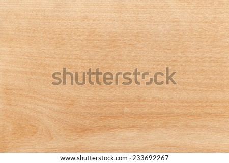 Birch. High resolution natural wood texture, no scratches, no dust. - stock photo