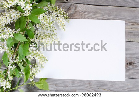 Bird cherry branch on a wooden surface - stock photo