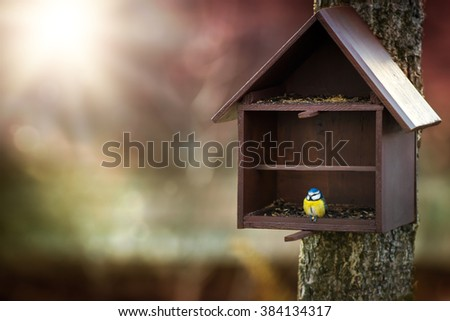 Bird feeder and Blue Tit (Cyanistes caeruleus) - stock photo