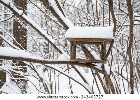 Bird feeder on the tree branches hangs among snow covered trees - stock photo