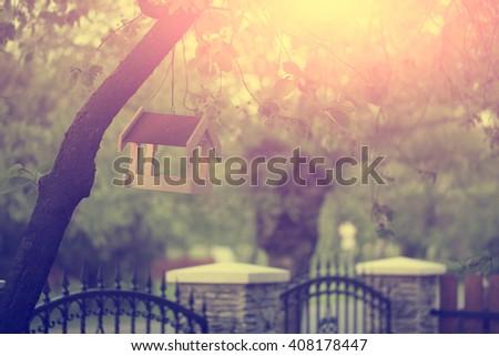 Bird feeder on tree - stock photo