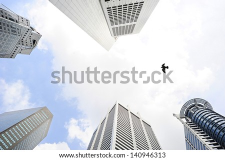 Bird flying beetwen the modern skyscrapers in Singapore - stock photo