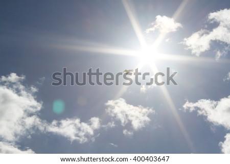 Bird flying towards the glaring sun on a clear day - stock photo