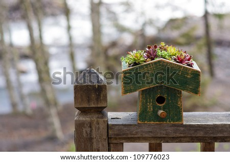 Bird house on railing with planted sedum green roof - stock photo