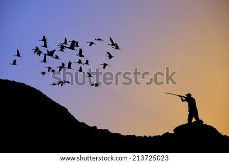 Bird Hunting  - stock photo