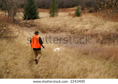 Bird hunting in a field - stock photo
