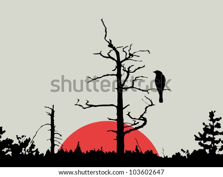 bird on branch amongst wood - stock photo