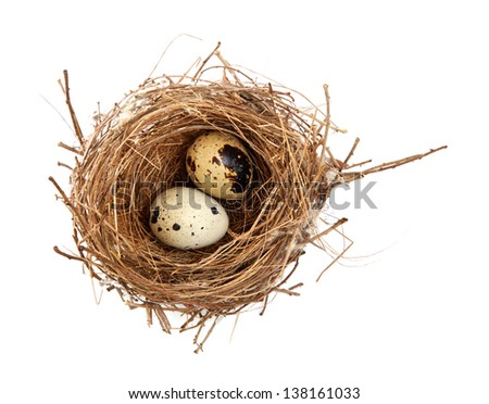 bird's nest and eggs - stock photo