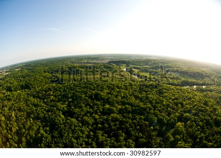 Birds eye view of woods - stock photo