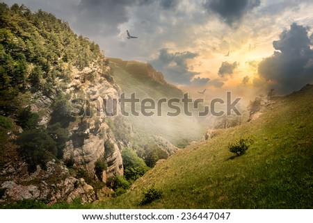 Birds over rocks and fog at the sunrise - stock photo