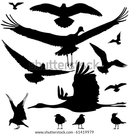 birds silhouettes isolated on white, abstract art illustration; for vector format please visit my gallery - stock photo