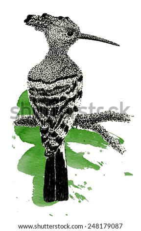 black and white bird, dots ink illustration - stock photo