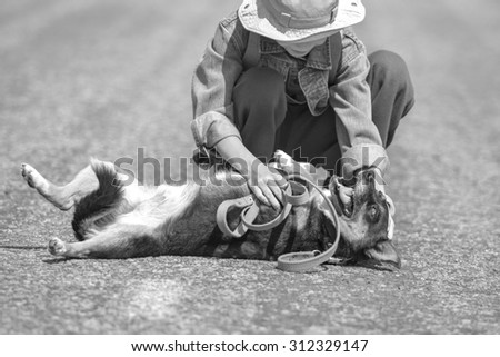 Black and white boy play with dog, focus on dog - stock photo