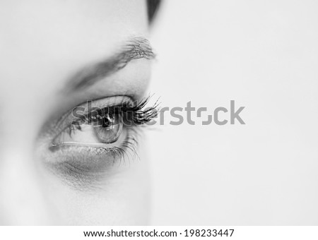 Black and white close up beauty portrait section view of an attractive young woman eye looking up to the side, being thoughtful and calm, wearing cosmetics. Healthy skin, sight and beauty care. - stock photo