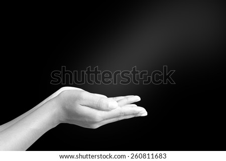 Black and white human hands - stock photo