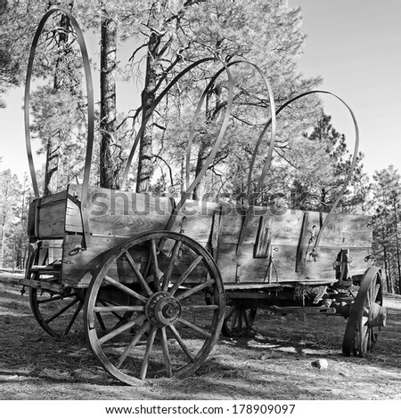 Black and white image of an Old West wagon in the forest - stock photo