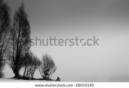 Black and White Landscape of Trees Silhouetted Against a Gray Sky - stock photo
