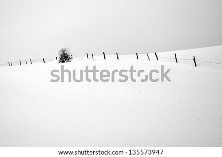 Black and white photo of winter landscape with fence and tree - stock photo