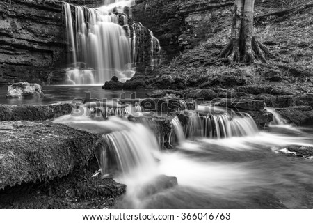 Black and white picturesque waterfall Scaleber Force in the heart of the Yorkshire Dales National Park. The waterfall is surrounded by woodland foliage such as leaves, trees and rocks in the river. - stock photo