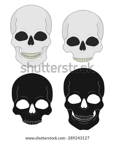 Black and white skull raster clip art illustrations isolated on white - stock photo