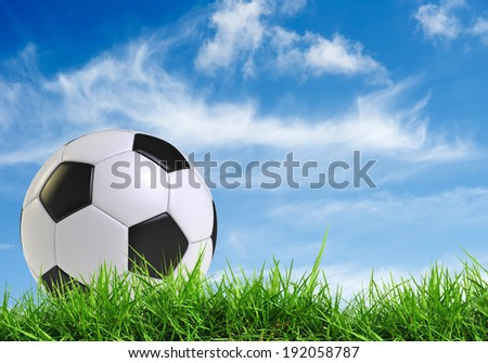 black and white soccer ball  on grass field with blue sky  - stock photo