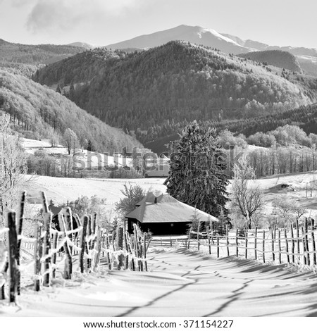 Black and white - sunrise in winter morning on transylvania hills. Holbav. Brasov. Romania. Low key, dark background, spot lighting, and rich Old Masters. - stock photo
