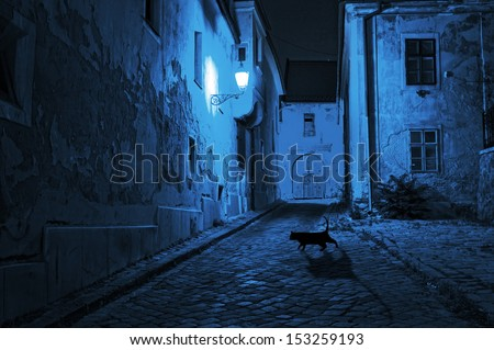 black cat crosses the deserted street at night - stock photo