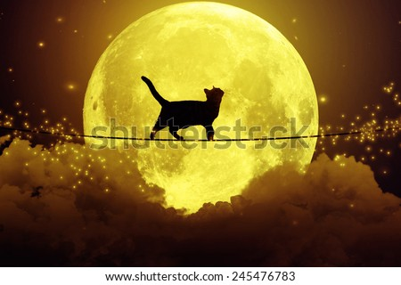 Black cat, kitty walking on rope above the clouds looking upwards at full moon, cloudy dark night sky background. Dreamy magic skyline, artistic screen saver. Elements of this image furnished by NASA - stock photo