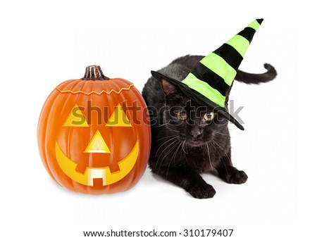 Black cat wearing a green and black striped witch hat laying next to an illuminated jack-o-lantern Halloween pumpkin - stock photo