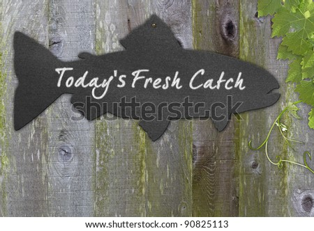 Black Chalkboard Fish  Restaurant Menu Copy Space For Fresh Seafood Over Distressed Grunge, Vintage, Aged And Green Moss Covered Wood Background Framed With Grape Leaves And Tendrils - stock photo