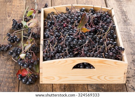 Black chokeberry (Aronia melanocarpa) berries in a wooden box. - stock photo