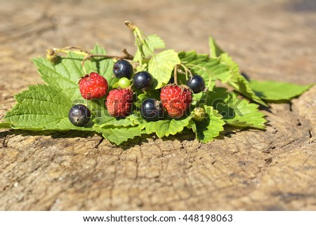 Black currant and Wild strawberry on wood with leaf - stock photo