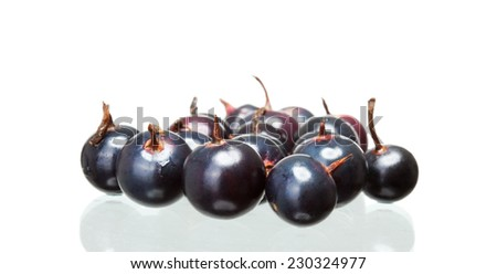 black currant with shadow isolated on white background - stock photo
