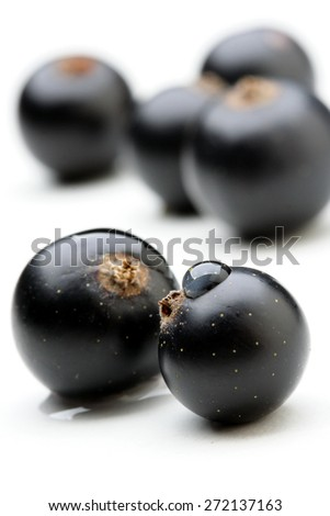Black currants - close up - stock photo