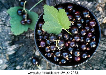 black currants in the black bowl on a wooden stump - stock photo