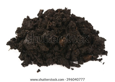 black earth on a white background - stock photo