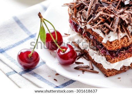 Black Forest cake piece on white plate with cherries berries close-up  - stock photo