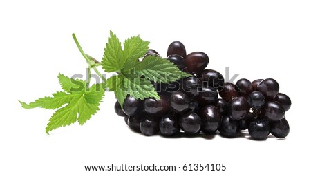 black grapes and leaf isolated on white background - stock photo