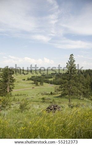 Black Hills of South Dakota. - stock photo