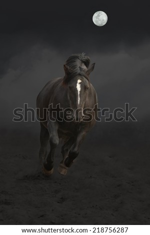 Black horse galloping with moon shining at night - stock photo