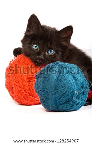 Black kitten playing with a red ball of yarn isolated on a white background - stock photo