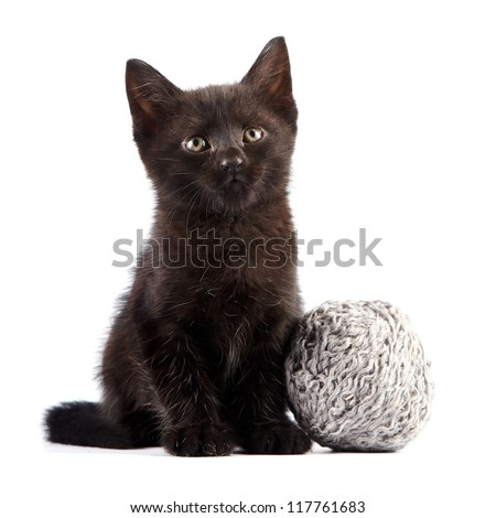 Black kitten with a woolen ball on a white background - stock photo