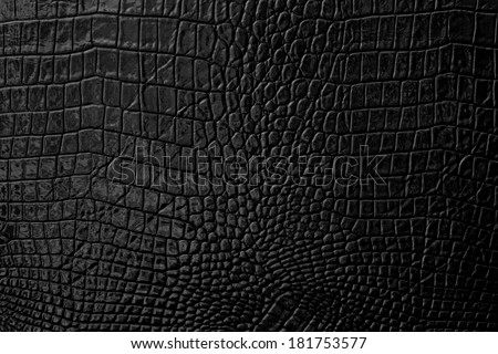 Black Leather background and texture - stock photo